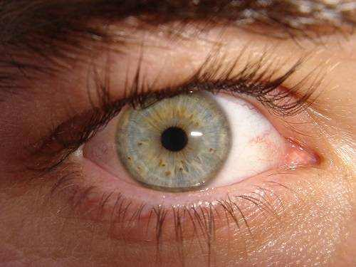 How to Reduce Eye Number
