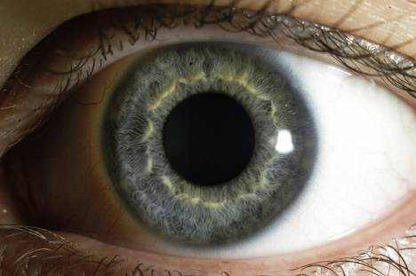 Function of the Cornea