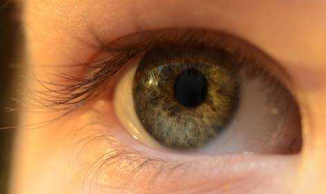 best contact lenses for sensitive eyes